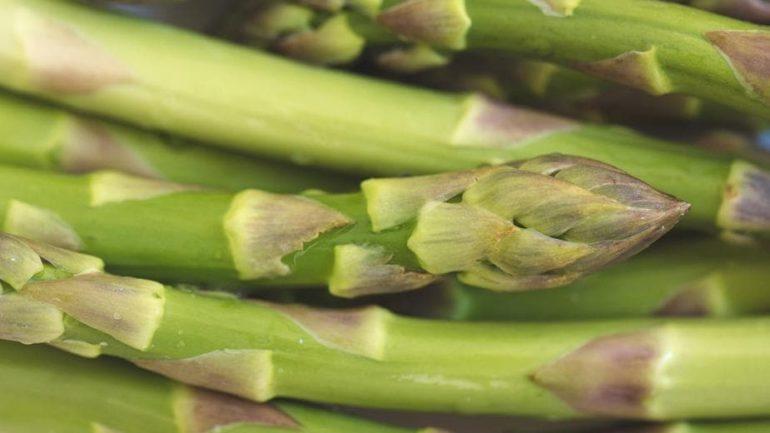 Cultiver des asperges dans votre jardin