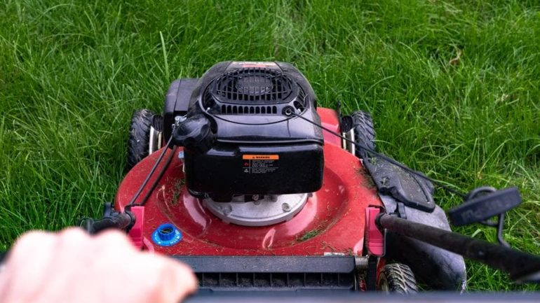 Entretien de la pelouse: C'est la saison….Enfin !