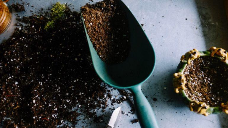 Le compostage dans votre jardins